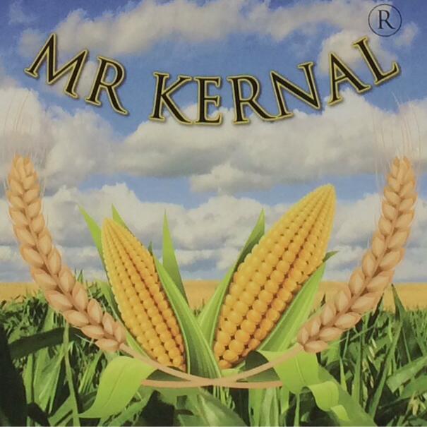 Mr Kernal logo